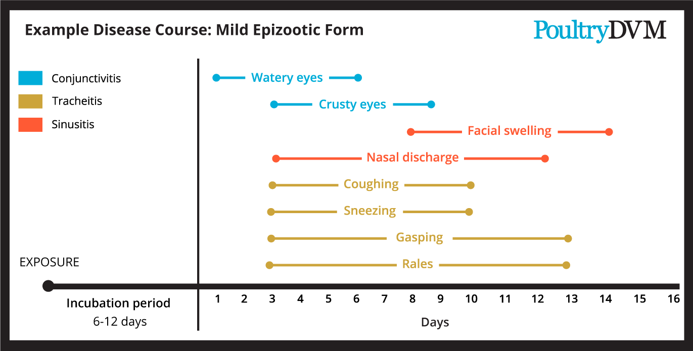 Example disease course for mild form of ILT