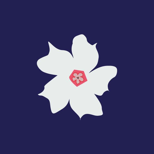 cerbera