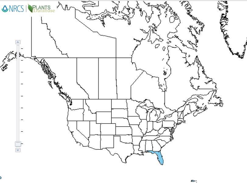Physic nut distribution - United States