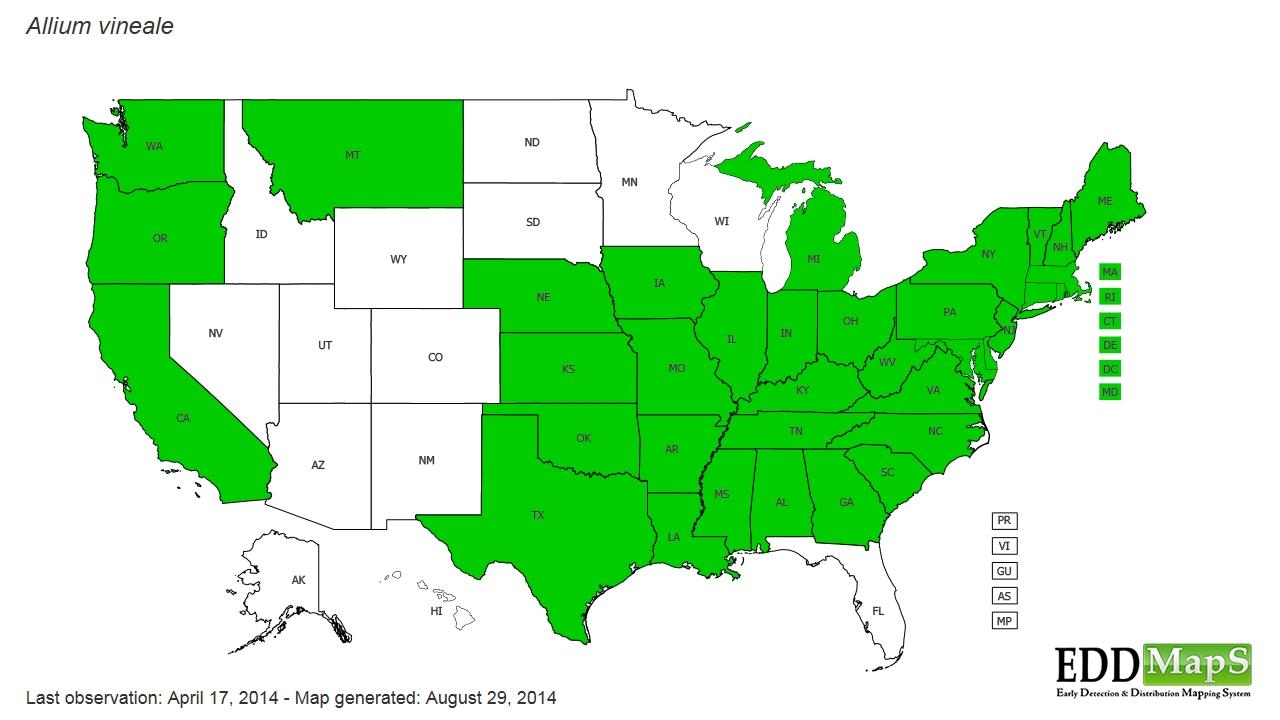 Onions distribution - United States