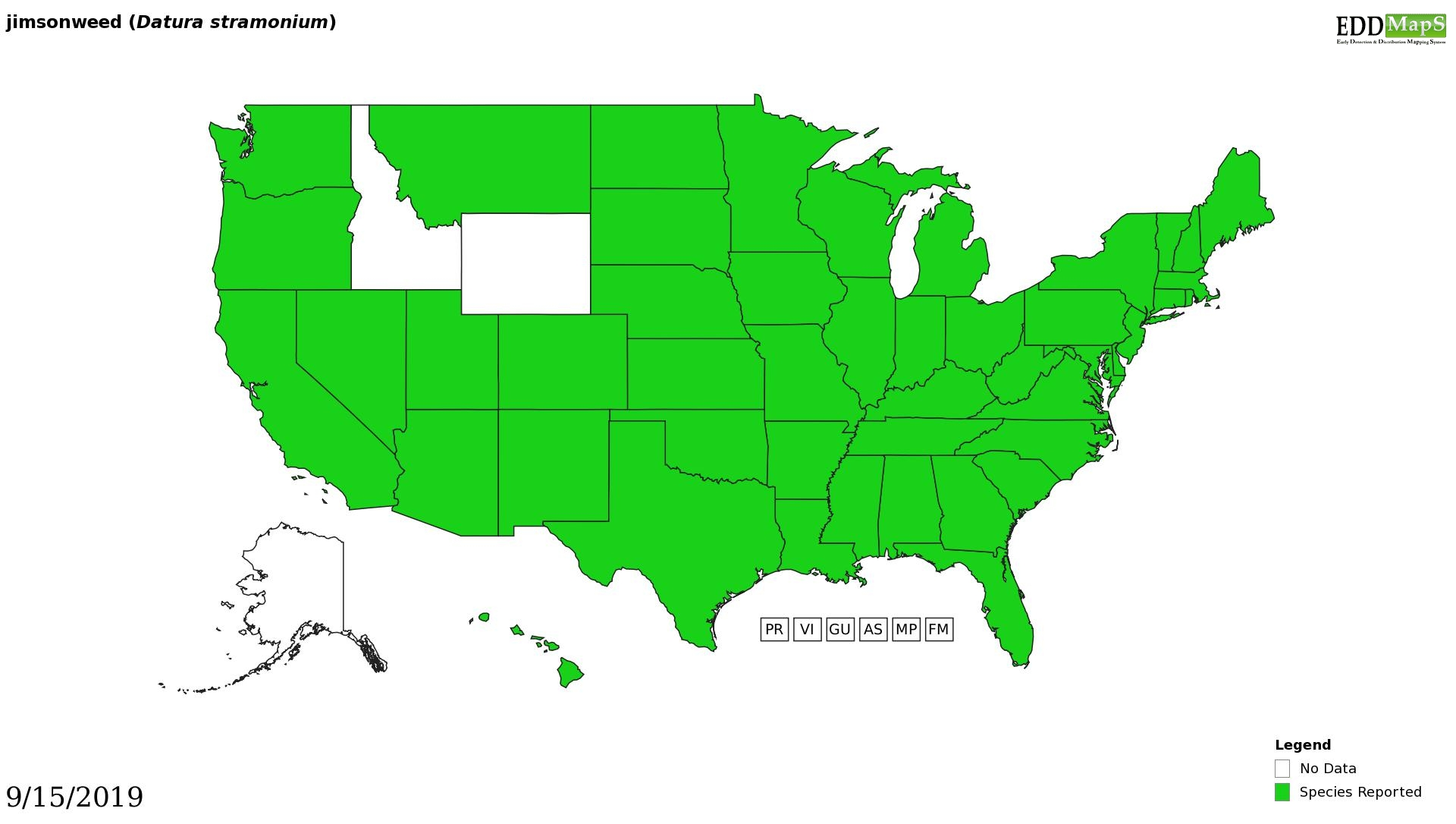 Jimsonweed distribution - United States