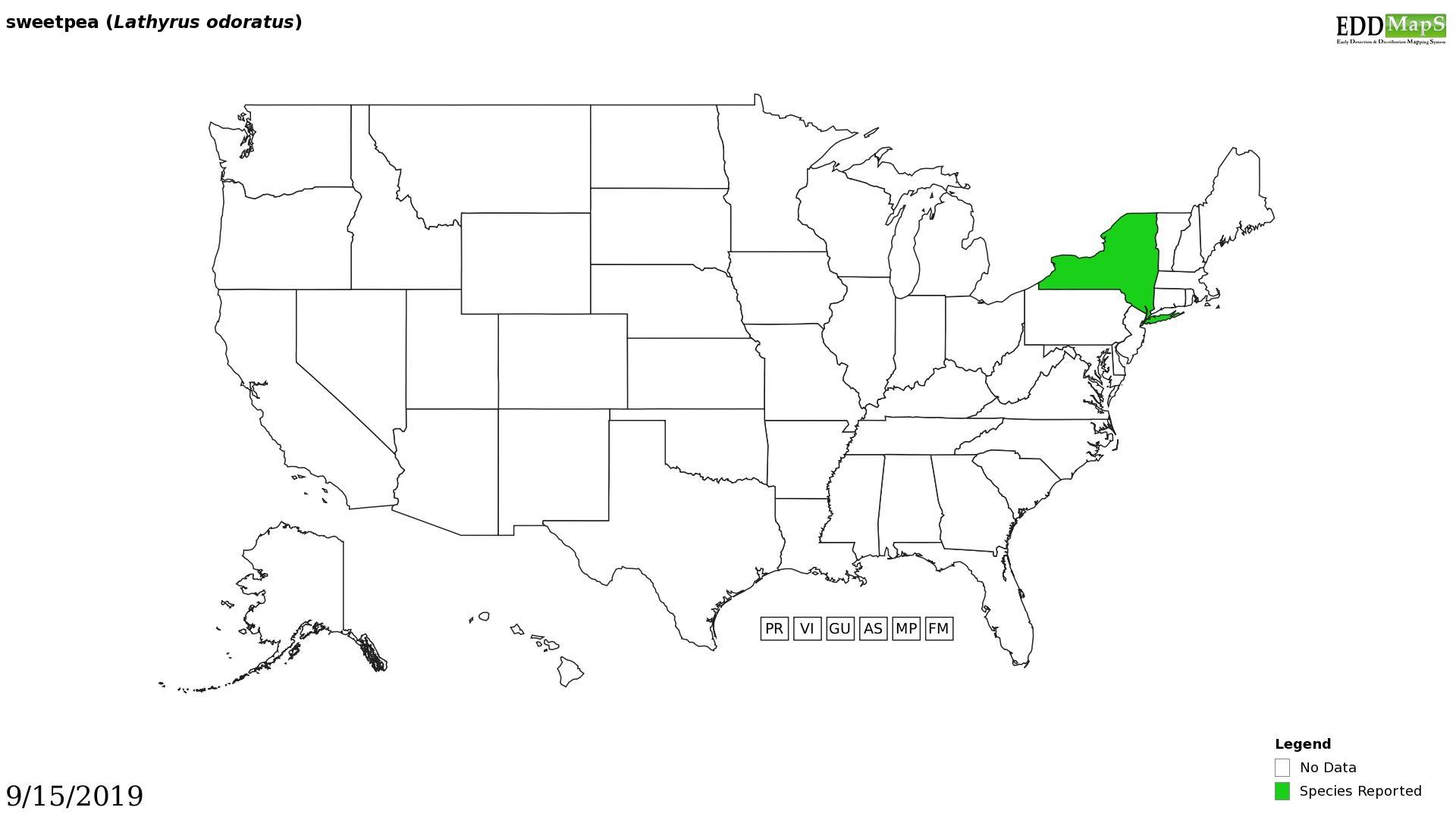 Sweat pea distribution - United States