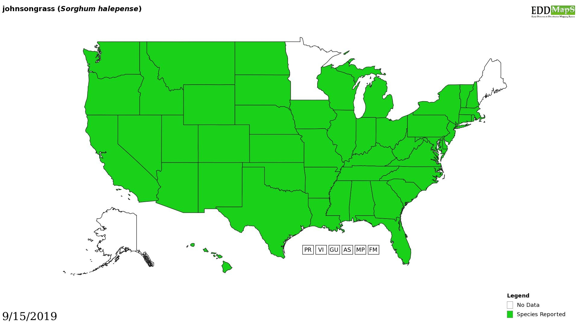 Johnsongrass distribution - United States
