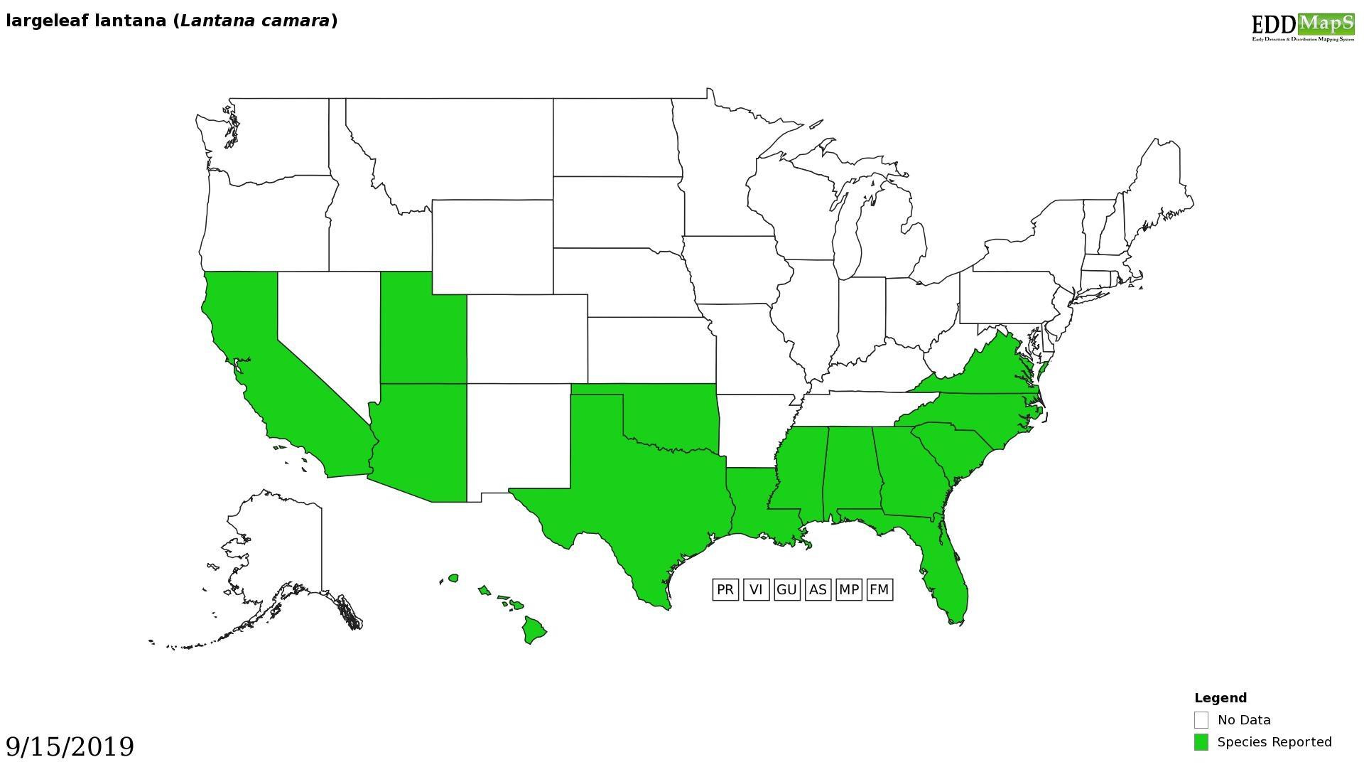 Lantana distribution - United States