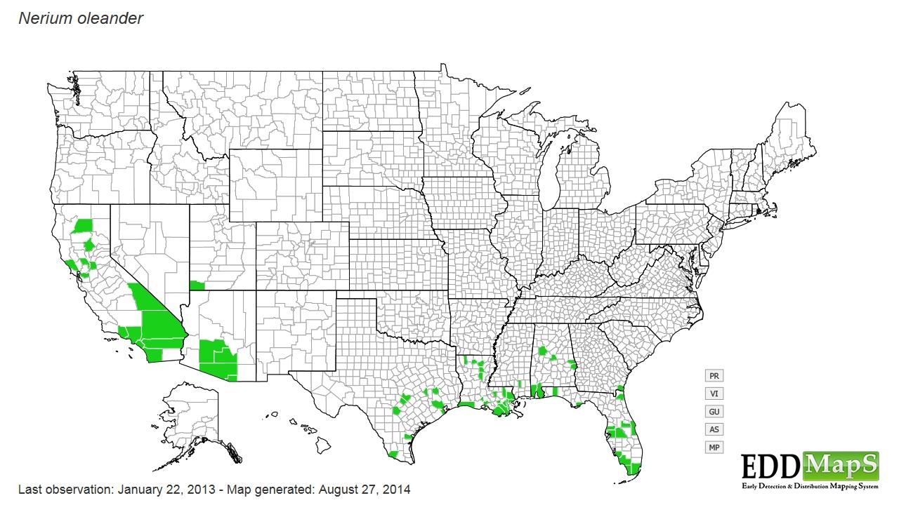 Oleander distribution - United States