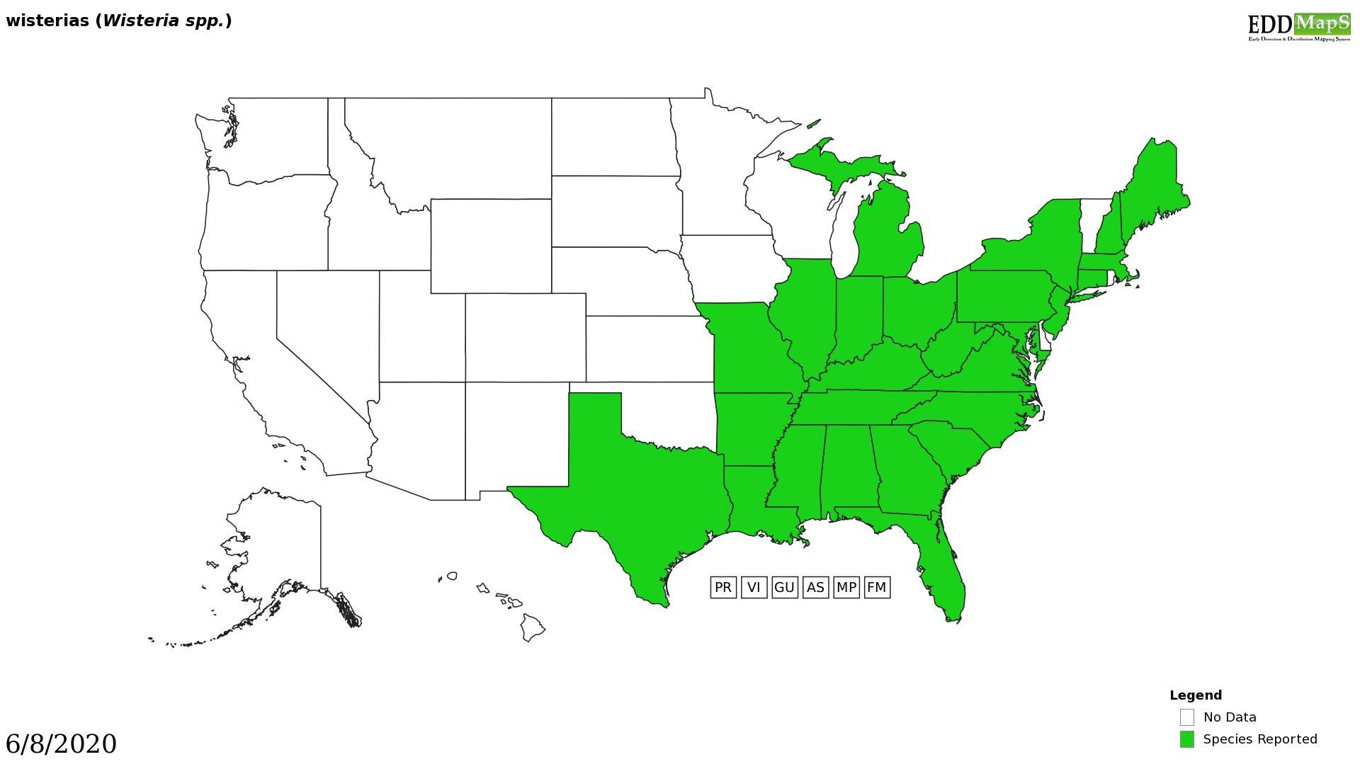 Wisteria distribution - United States