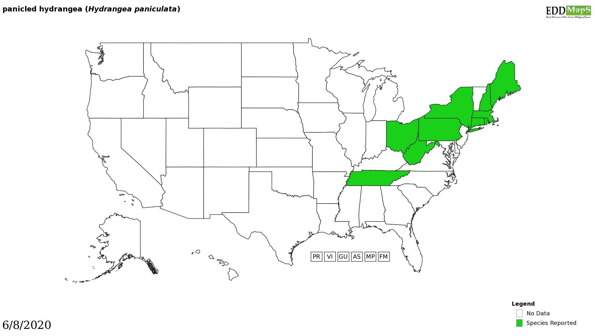 Hydrangea distribution - United States