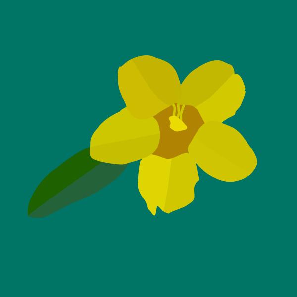 yellowjas