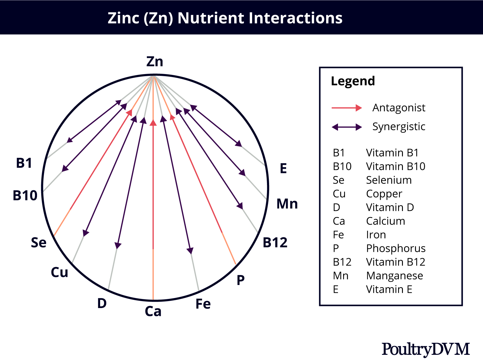 Zinc nutrient interactions