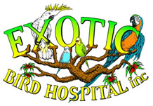 Exotic Bird Hospital Logo