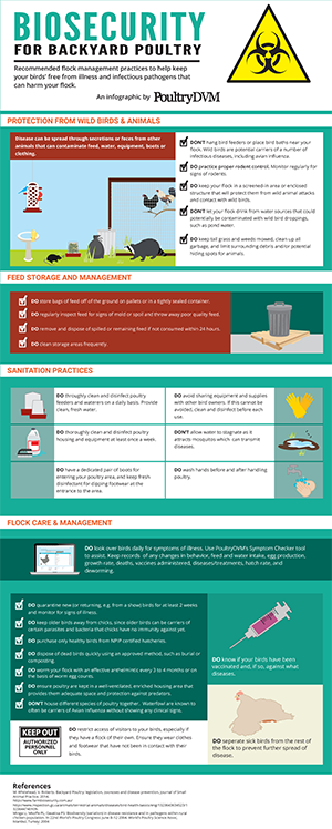 Biosecurity Tips for Backyard Poultry Infographic