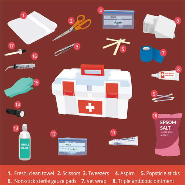 Chicken Keeping First Aid Supply List