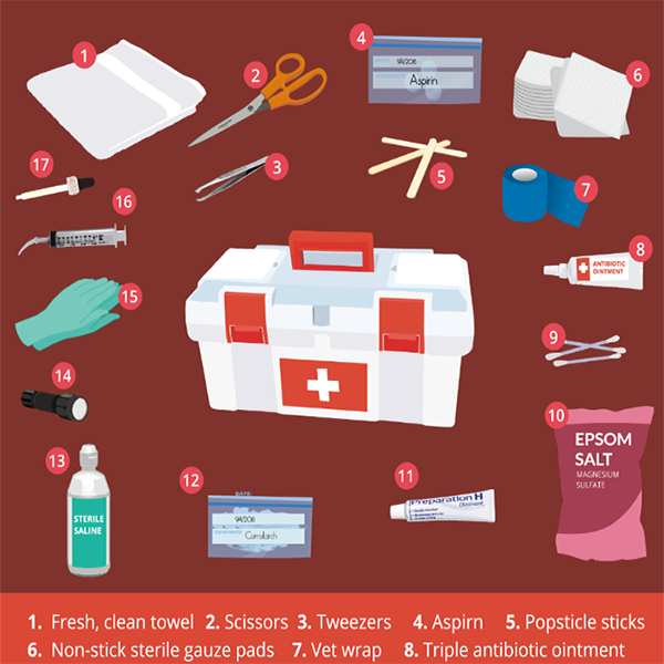 Poultry Keeping First Aid Supply List