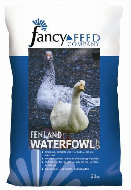 Fenland Waterfowl image