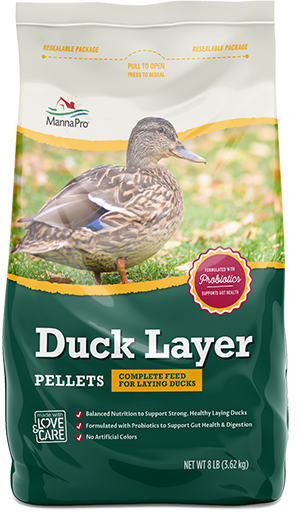 Duck Layer image