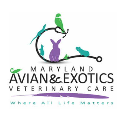 Maryland Avian & Exotics Veterinary Care