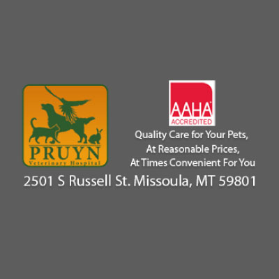 Pruyn Veterinary Hospital