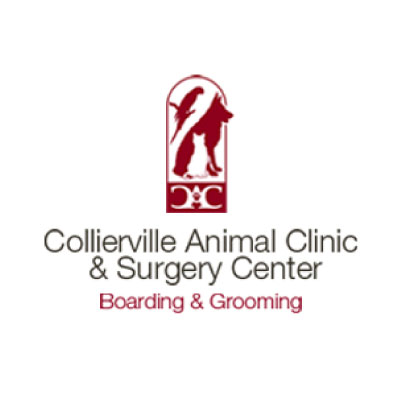 Collierville Animal Clinic & Surgery Center