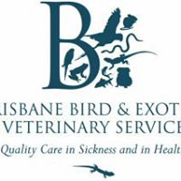 Brisbane Bird & Exotics Veterinary Services