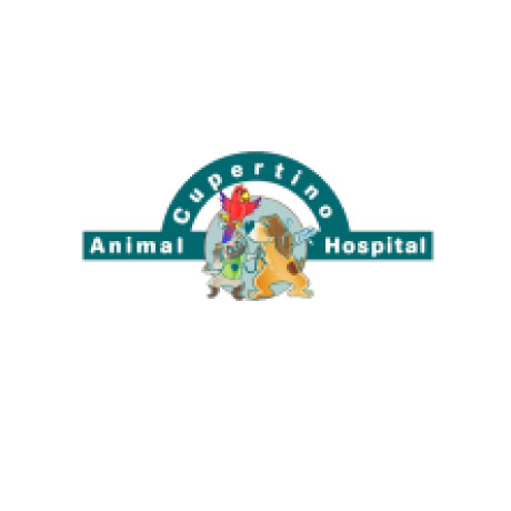 Cupertino Animal Hospital