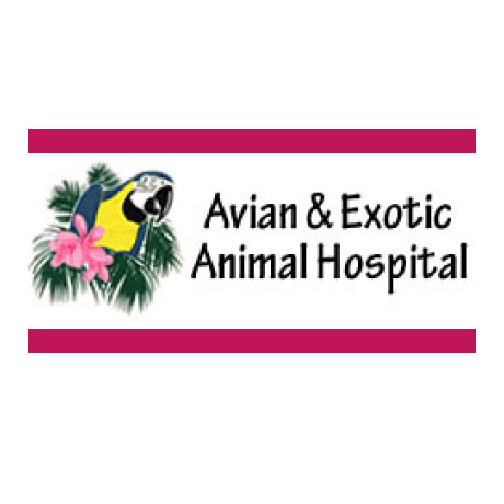 Avian and Exotic Animal Hospital San Diego