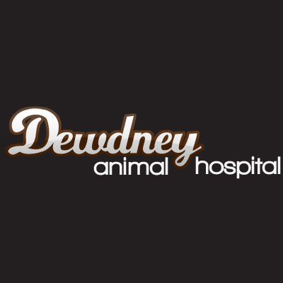 Dewdney Animal Hospital