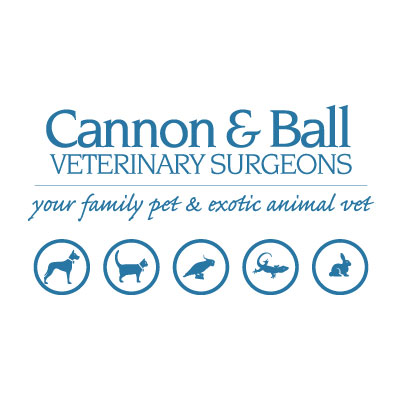 Cannon and Ball Veterinary Surgeons