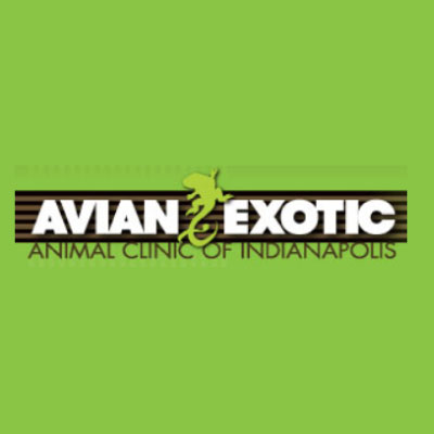 Avian Exotic Animal Clinic of Indianapolis