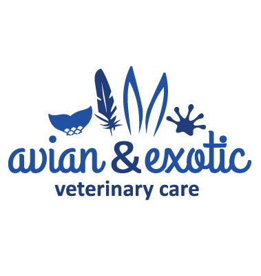 Avian and Exotic Veterinary Care