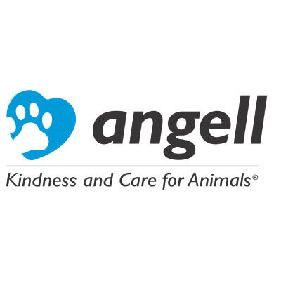 Angell Animal Medical Center