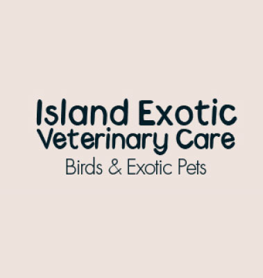 Island Exotics Veterinary Care