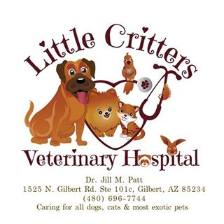 Little Critters Veterinary hospital