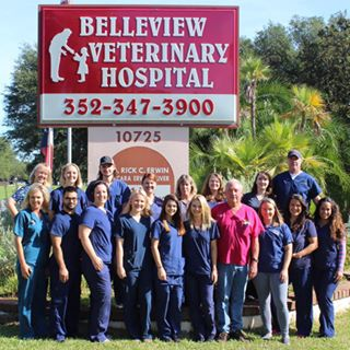 Belleview Veterinary Hospital