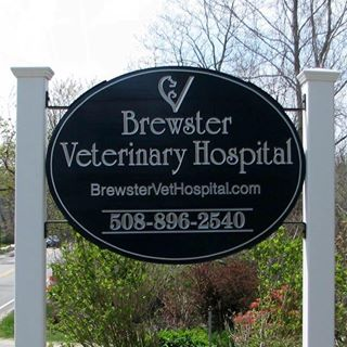 Brewster Veterinary Hospital