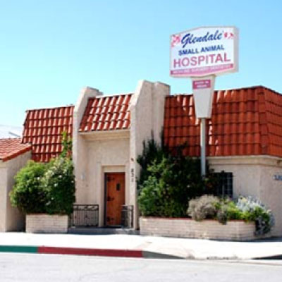 Glendale Small Animal Hospital