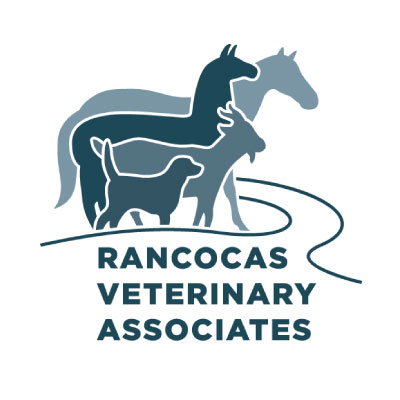 Rancocas Veterinary Associates