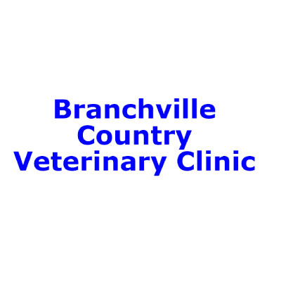 Branchville Country Veterinary Clinic