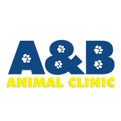A and B Animal Clinic