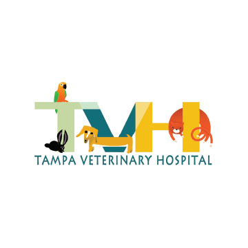 Tampa Veterinary Hospital
