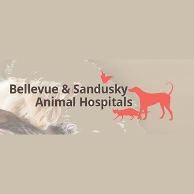 Sandusky Animal Hospital
