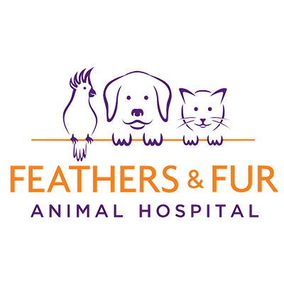 Feathers and Fur Animal Hospital